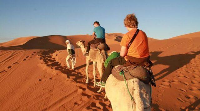 5 étapes pour réserver et organiser une excursion d'une journée